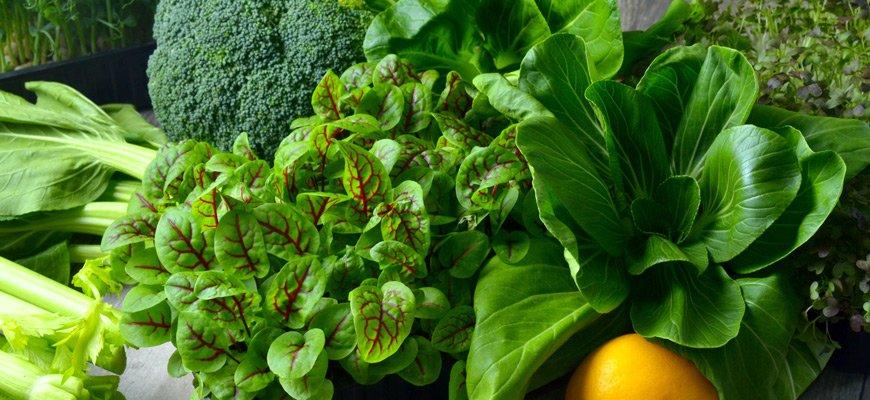 Acido Folico nelle verdure